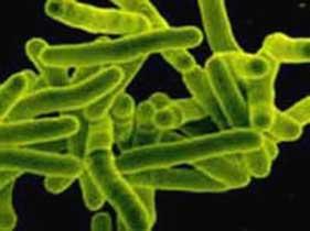 Признаки инфекционных болезней