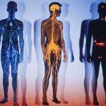 Болезнь — описание термина