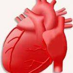 Неврозы сердца