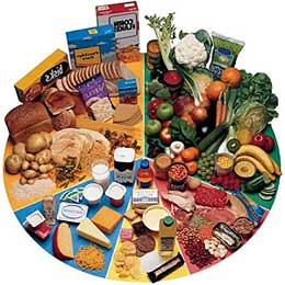диетология основы правильного питания