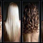 Волосы — уход, описание, строение