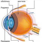 Зарядка для глаз, чтобы сохранить зрение