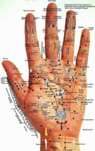 Схема отображения болезней на ладонях