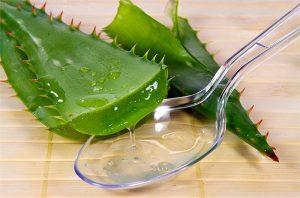 Лечение алоэ разных болезней (Aloe treatment of various diseases)