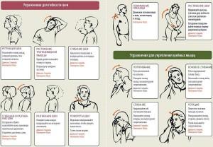 Упражнения для гибкости и укрепления шеи (Exercises for flexibility and strengthen the neck)