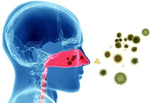 Правила по профилактике заражения коронавирусной инфекции (Rules for the prevention of coronavirus infection)